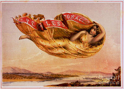 Retro Tobacco Label 1864 Poster by Padre Art