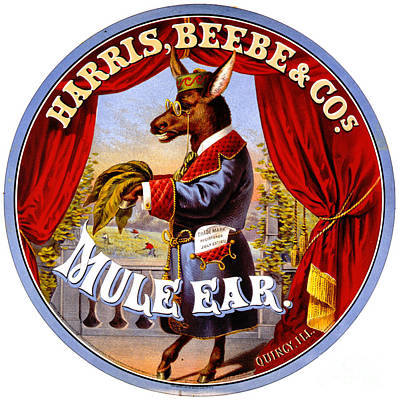 Retro Tobacco Label 1868 B Poster by Padre Art