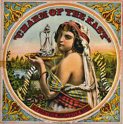 Retro Tobacco Label 1872 Poster by Padre Art