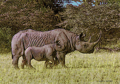 Rhino Mother And Calf Poster by Larry Linton