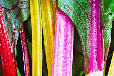Rhubarb Skin Poster by Tom Gowanlock