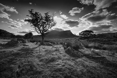 Poster featuring the photograph Rhyd Ddu, Snowdonia, Wales by Richard Wiggins