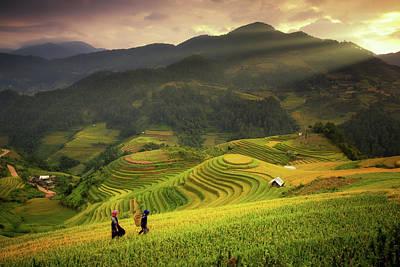 Rice Fields On Terraced Of Mu Cang Chai Poster by Anek Suwannaphoom