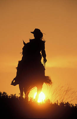 Riding Cowgirl Sunset Poster