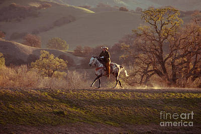 Horseback On Top Of The Hill Poster by Ana V Ramirez