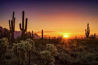 Poster featuring the photograph Rise And Shine Arizona  by Saija Lehtonen