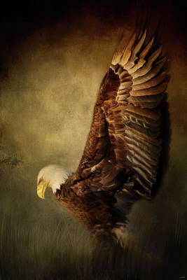 Rise Up Bald Eagle Art Poster by Jai Johnson