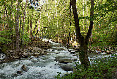 River At Greenbrier Poster by Sandy Keeton