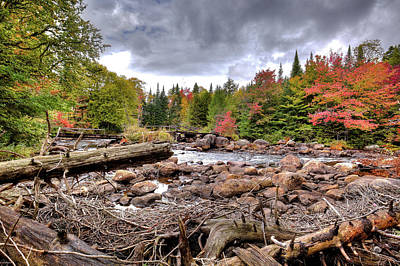 Poster featuring the photograph River Debris At Indian Rapids by David Patterson