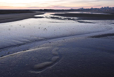 Dusky Wetlands Poster
