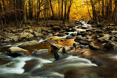 River In Great Smoky Mountains National Park Poster by Carol Mellema
