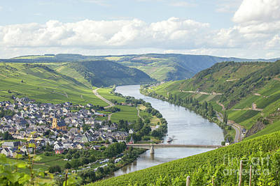 River Mosel And Vineyards Poster by Patricia Hofmeester