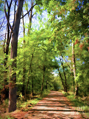 Poster featuring the photograph Riverway Trail - Bisset Park - Radford Virginia by Kerri Farley