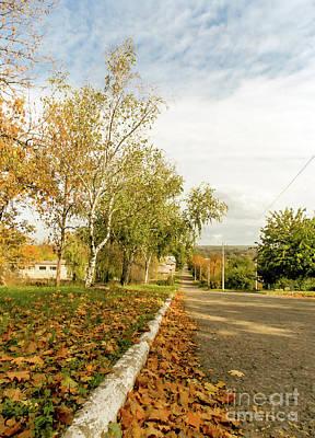 Road In Autumn Poster by Viktoriya Manukyan