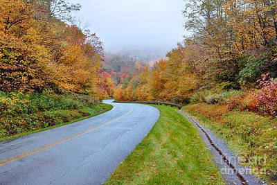 Road Through Autumn Paradise Poster by Dan Carmichael