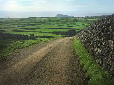 Road Through The Pastrues Of Terceira  Poster