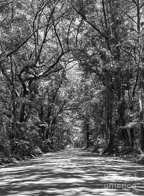 Road To Angel Oak Grayscale Poster by Jennifer White