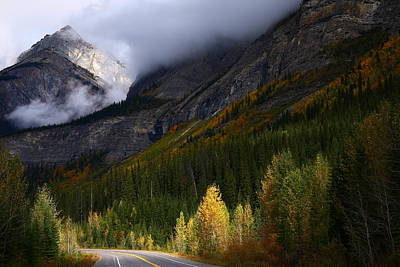 Roadside Landscape At Banff National Park Poster
