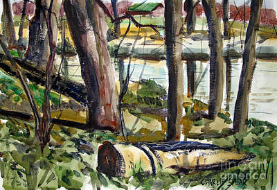 Poster featuring the painting Roadside Park Along The Wabash River by Charlie Spear