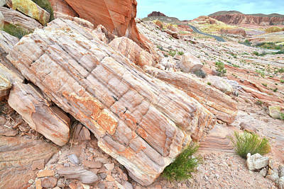 Poster featuring the photograph Roadside Sandstone In Valley Of Fire by Ray Mathis