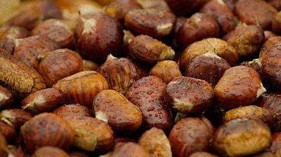 Roasted Chestnuts Closeup Poster by Design Turnpike