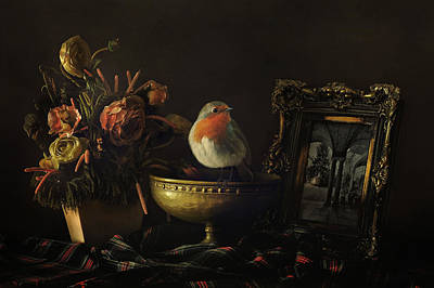 Robin And Still Life Poster by Sue Fulton