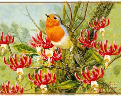 Robin Summer Poster by John Francis
