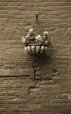 Poster featuring the photograph Rochester, New York - Wall And Flowers Sepia by Frank Romeo