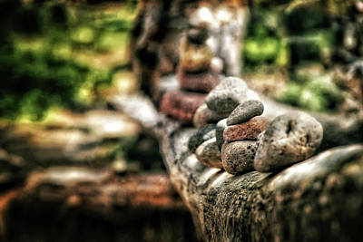 Rock Cairn At Buddha Beach Sitting On Tree Branch - Sedona Poster by Jennifer Rondinelli Reilly - Fine Art Photography