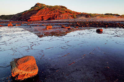 Poster featuring the photograph Rock Shelf At Long Reef 1 by Nicholas Blackwell