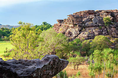 Rocks And Gum Trees At Golden Hour In Kakadu National Park, Nt,  Poster by Daniela Constantinescu
