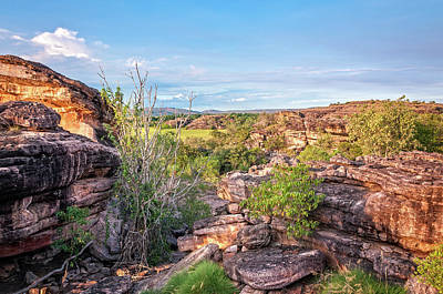 Rocks And Gum Trees - Kakadu National Park Poster by Daniela Constantinescu