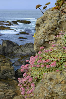 Rocky Cliff On California Coast Poster by Carla Parris