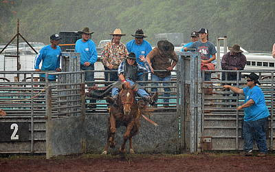 Poster featuring the photograph Rodeo Bronco by Lori Seaman