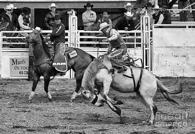 Rodeo Saddleback Riding 2 Poster by Bob Christopher