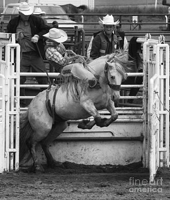 Rodeo Saddleback Riding 5 Poster by Bob Christopher