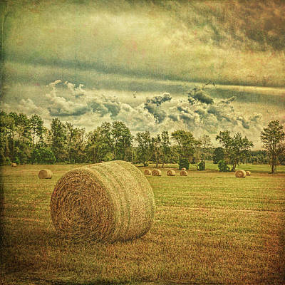 Poster featuring the photograph Rollin' Hay by Lewis Mann