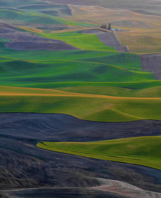 Rolling Fields Of The Palouse Poster by James Hammond