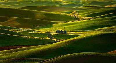 Rolling Hills Of The Palouse Poster by Thorsten Scheuermann