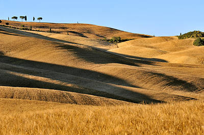 Rolling Hills Of Tuscany Poster