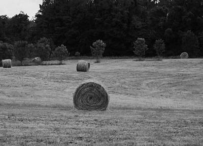 Rolls Of Hay Bales In Tennessee Poster