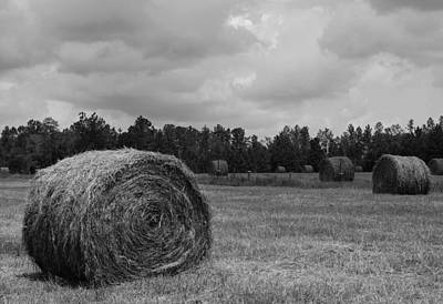 Rolls Of Hay Poster by M Glisson