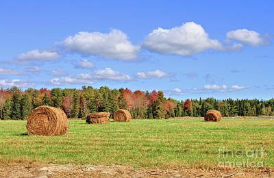 Rolls Of Hay On A Beautiful Day Poster