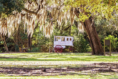 Roman Candy Cart Under The Oaks Poster