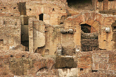 Poster featuring the photograph Roman Colosseum by Silvia Bruno