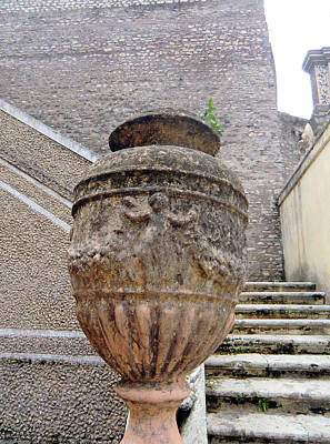 Roman Vase Poster by Mindy Newman