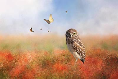 Romping In The Poppy Field Poster by Kim Hojnacki