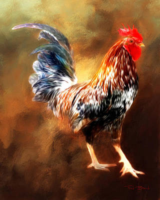 Rooster Poster by Fred Baird