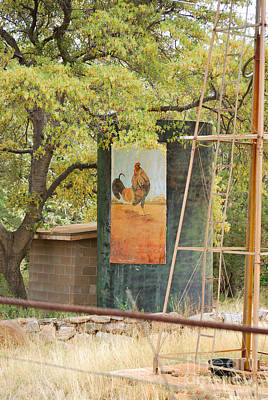Poster featuring the photograph Rooster Water Tank by Donna Greene