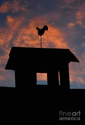 Rooster Weather Vane Silhouette Poster by Henry Kowalski